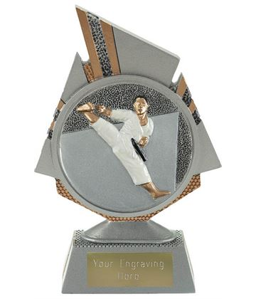 "Shard Karate Trophy 15cm (6"")"
