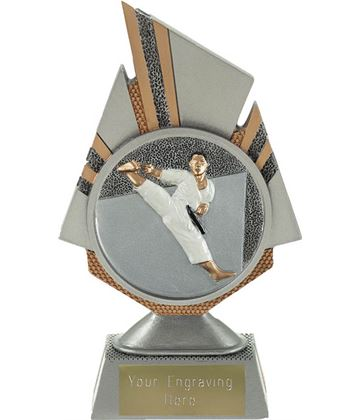 "Shard Karate Trophy 17.5cm (6.75"")"