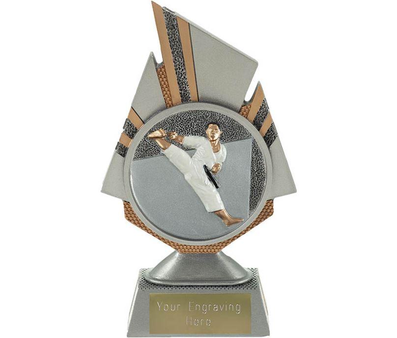 "Shard Karate Trophy 17.5cm (6.75"")"