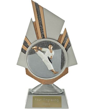 "Shard Karate Trophy 19.5cm (7.75"")"