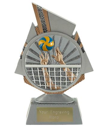 "Shard Volleyball Trophy 15cm (6"")"
