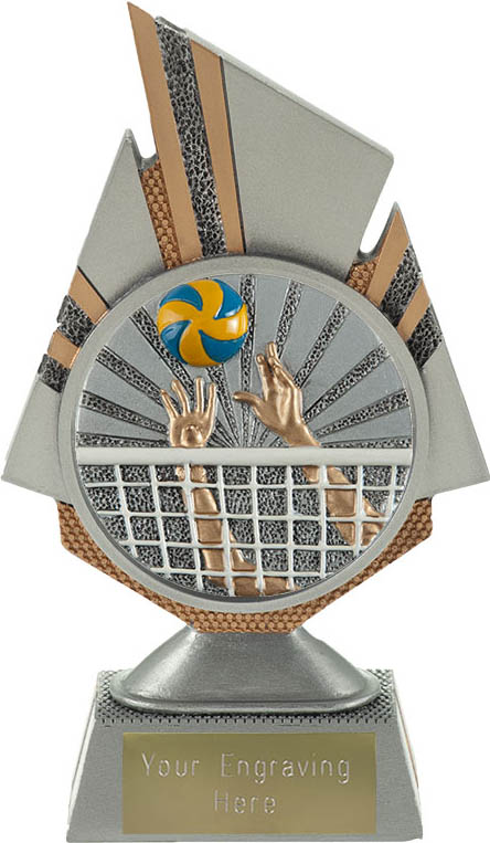 "Shard Volleyball Trophy 17.5cm (6.75"")"