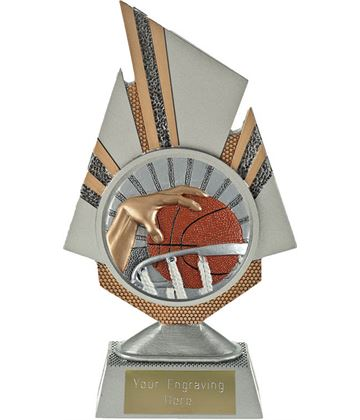 "Shard Basketball Trophy 19.5cm (7.75"")"