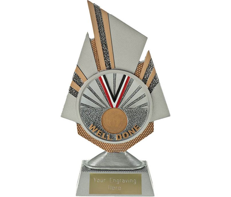 "Shard Well Done Trophy 19.5cm (7.75"")"