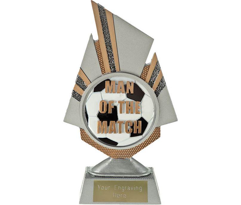 "Shard Man of the Match Trophy 19.5cm (7.75"")"
