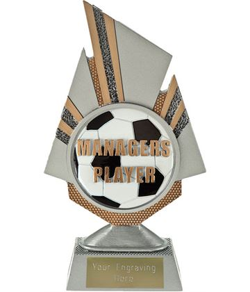 """Shard Managers Player Trophy 19.5cm (7.75"""")"""