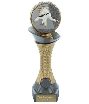 "Judo Trophy Heavyweight Hemisphere Tower Silver & Gold 25.5cm (10"")"