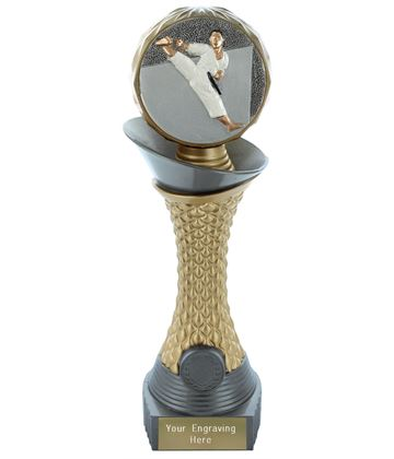 "Karate Trophy Heavyweight Hemisphere Tower Silver & Gold 25.5cm (10"")"