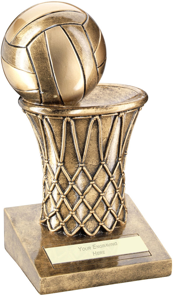 "Netball And Net Trophy 17cm (6.75"")"