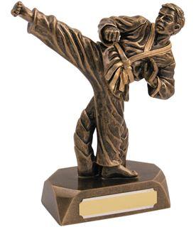 "Resin Antique Gold Karate Award 16.5cm (6.5"")"