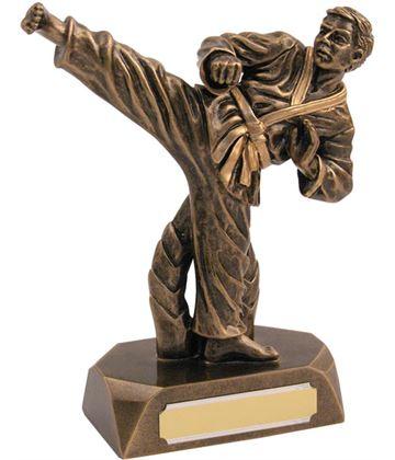 "Resin Antique Gold Karate Award 19cm (7.5"")"