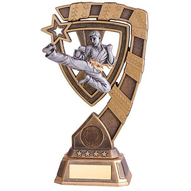 "Euphoria Karate Trophy 18cm (7"")"
