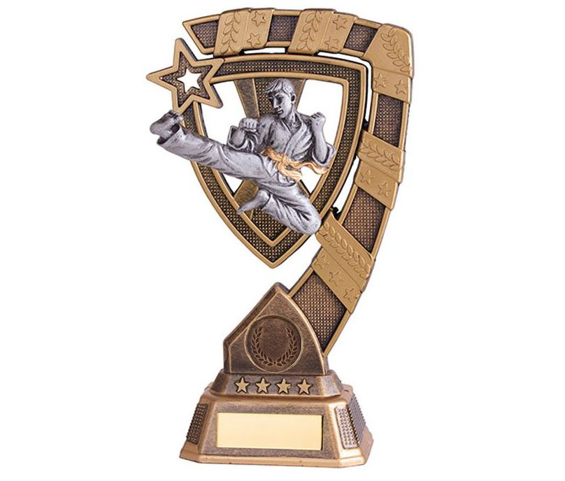 "Euphoria Karate Trophy 21cm (8.25"")"