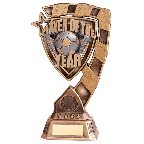 """Euphoria Player Of The Year Football Trophy 15cm (6"""")"""