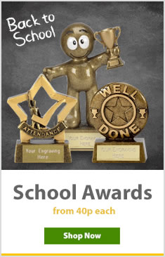 School Awards