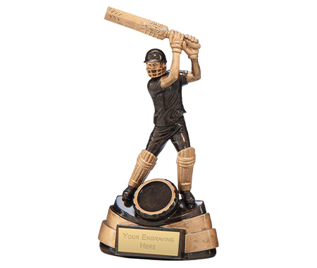 Action Cricket Trophies